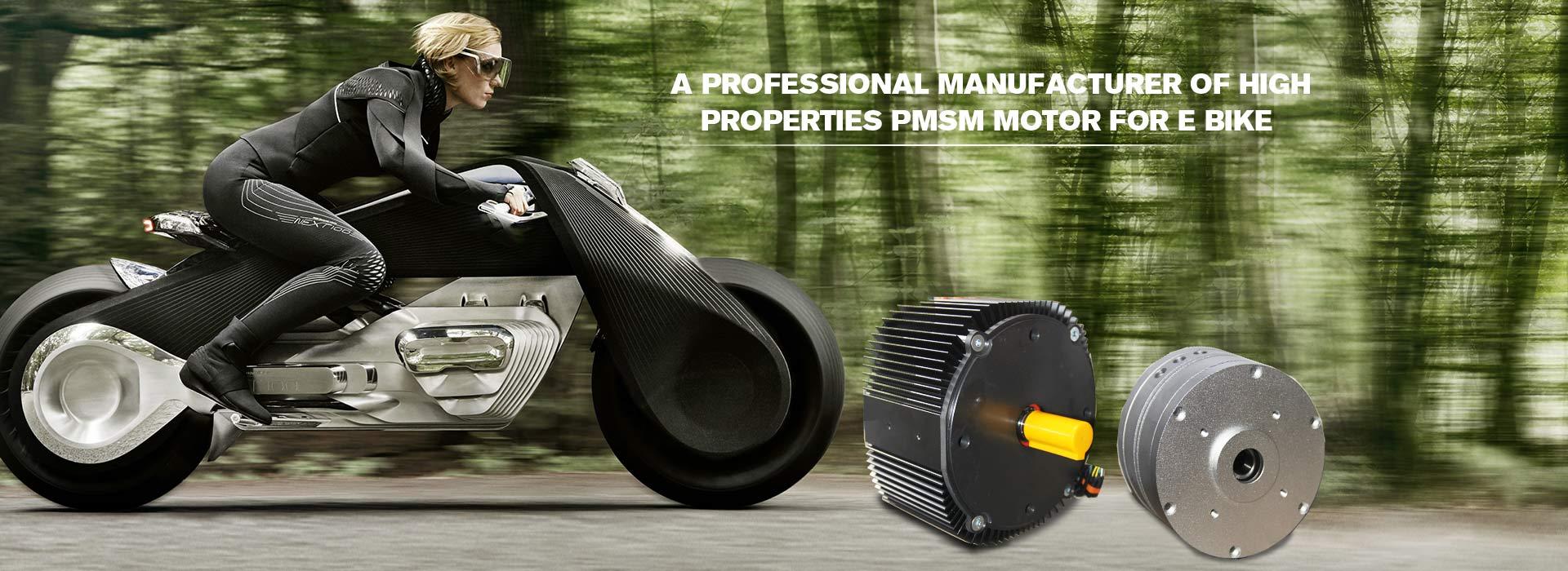 Emotorcycles Motor